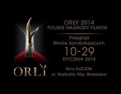 Zanim dostaną Orły. Przegląd kandydatów do Polskich Nagród Filmowych