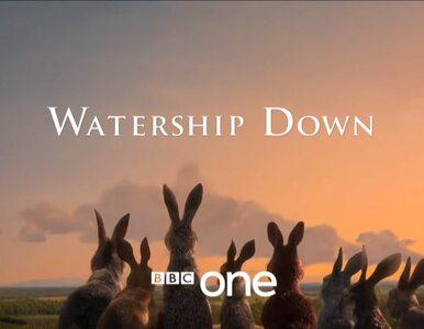 """""""Wodnikowe Wzgórze"""". Netflix i BBC prezentują pierwszy trailer wspólnej..."""