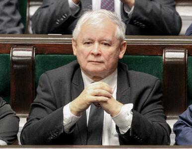 Karczewski miał wskazać dwie wady prezesa PiS. Zobacz, co odpowiedział