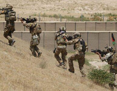 Amerykanie wychodzą z Afganistanu. A tam właśnie zaczęto robić najlepszą...