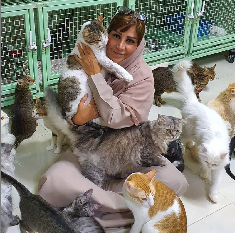 Zwierzęta, którymi opiekuje się Maryam al-Balushi