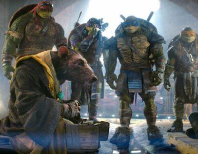 Wojownicze Żółwie Ninja. Pamiętasz głównych bohaterów?