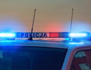 Policjanci zatrzymali tysiące dowodów rejestracyjnych. Czego dotyczy ta...