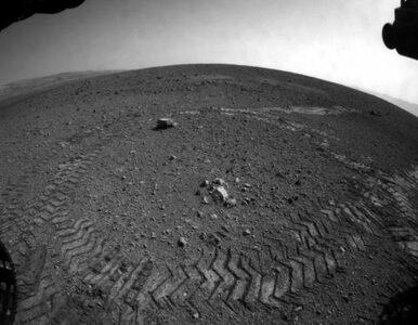 """""""Pierwszy człowiek na Marsie być może już się urodził"""""""