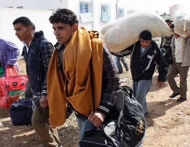 Sadurska: Rząd podejmował decyzję ws. uchodźców i rząd może ją zmienić