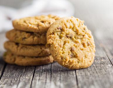 Dieta ciasteczkowa – skuteczny sposób na odchudzanie?