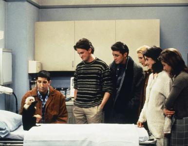"""Quiz z 17. odcinka serialu """"Przyjaciele"""".  Co połknął Marcel?"""