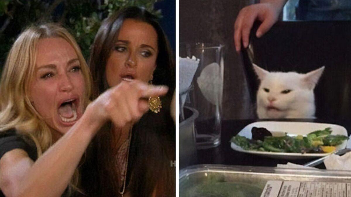 """Mem z kotem Smudgem i Taylor Armstrong z serialu """"Żony Beverly Hills"""""""