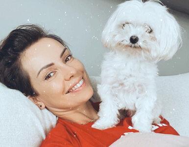 Dorota Gardias zakażona koronawirusem. Pogodynka przerwała milczenie
