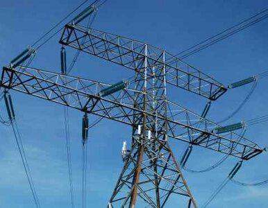 Kilkadziesiąt tysięcy domostw bez prądu. Powód? Lód