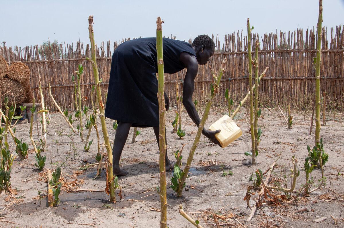 Zdjęcie z Sudanu Południowego