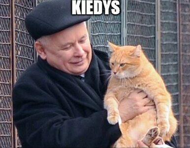 """Rzeczniczka PiS publikuje mema z Kaczyńskim. """"Kiedyś to wszystko będzie..."""