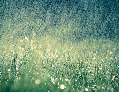 Niedziela z deszczem i burzami. Ale nie w całym kraju