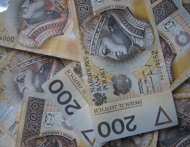 Ukradli 4,5 mln złotych. Kolejny zatrzymany