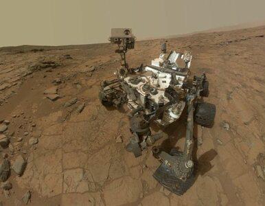 Łazik Curiosity sfotografował na Marsie... siebie