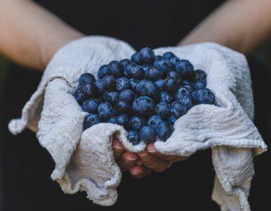 Naukowcy: Te owoce zawierają związek, który leczy stany zapalne