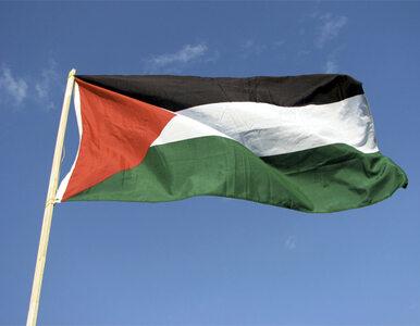 Palestyna w ONZ jest już jak Watykan