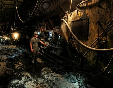 Paliwo ze śmieci alternatywą dla polskiego węgla? Gospodarka może zyskać...