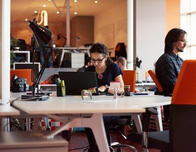 Raj dla start-upów