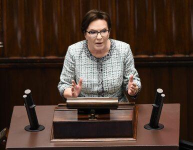 Kopacz: PO rozważa pozew zbiorowy przeciwko Kaczyńskiemu. Czegoś takiego...