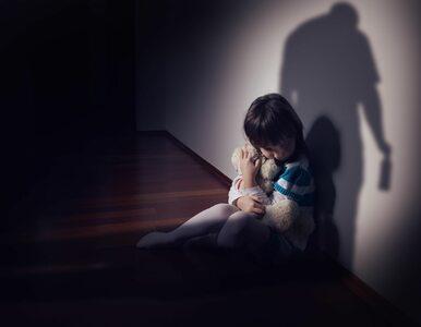 Nowa bezpłatna infolinia dla dzieci, młodzieży i ich opiekunów
