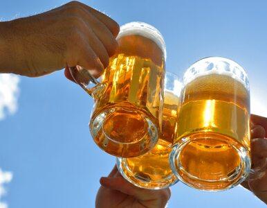 Powstała pierwsza w Europie fontanna piwa