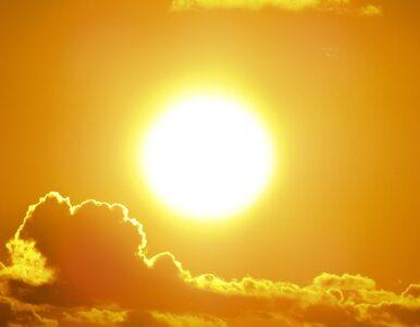 Naukowcy: Ten owoc może chronić przed działaniem promieni UV