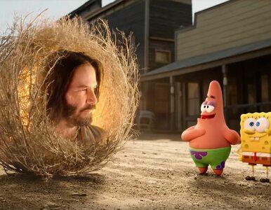 Keanu Reeves w kinowej wersji SpongeBoba. Zagra chamaechorę, czyli...