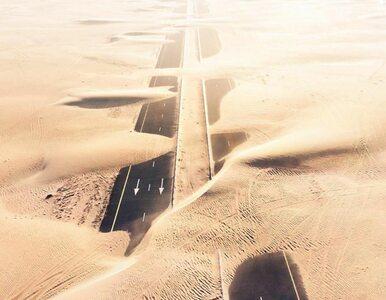 """Naukowcy: Do 2070 roku w """"ekstremalnych upałach"""" będą żyć nawet 3..."""