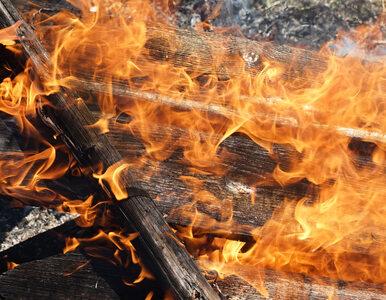 """Zabójstwo rodziny czy zemsta? """"To nie był przypadkowy pożar"""""""