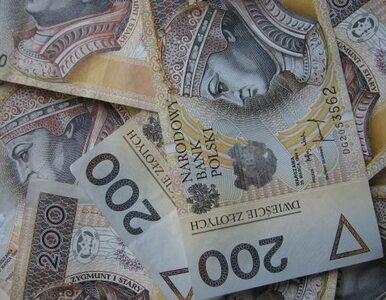 GUS: Deficyt w finansach publicznych zmalał do 55 mld zł