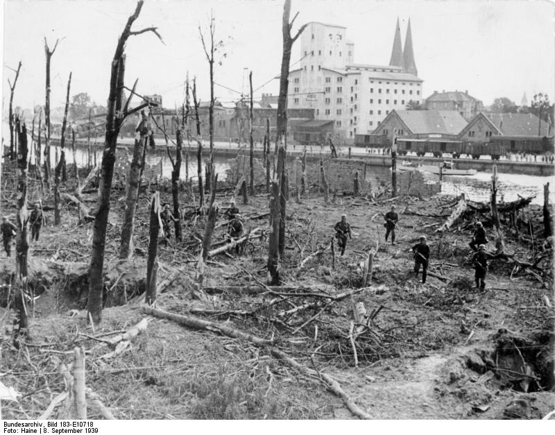 """Zdjęcie spalonego lasu na Westerplatte po zdobyciu półwyspu Opis niemieckiej propagandy: """"Tutaj Polacy uparcie stawiali opór, zmuszeni jedynie odwagą, z jaką szturmowali wojska niemieckie"""""""