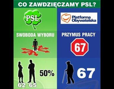 Sawicki o plakatach PSL: młodzi się zabawili, niech PO też się zabawi