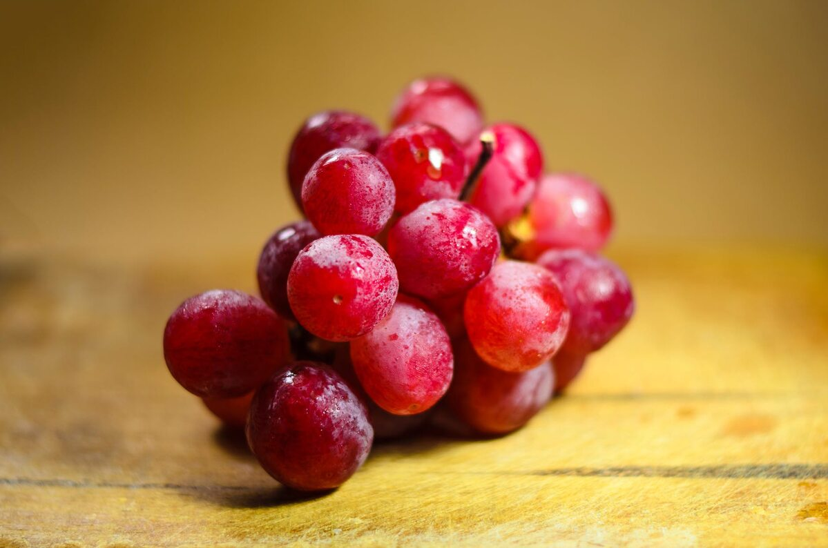 Winogrona Zdjęcie ilustracyjne