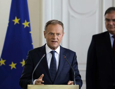 Donald Tusk jest milionerem? Policzono, ile zarabia w Brukseli
