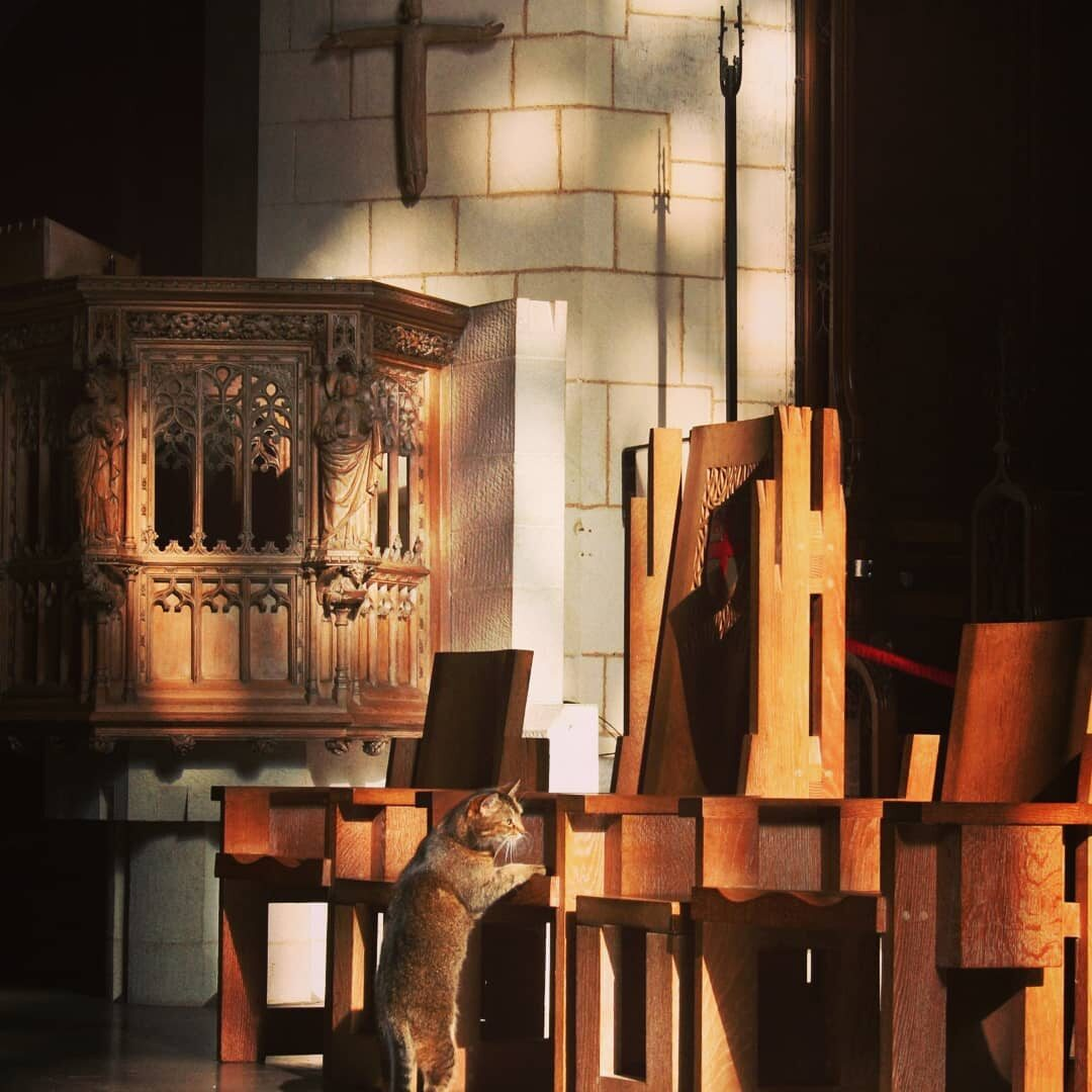 Doorkins Magnificat