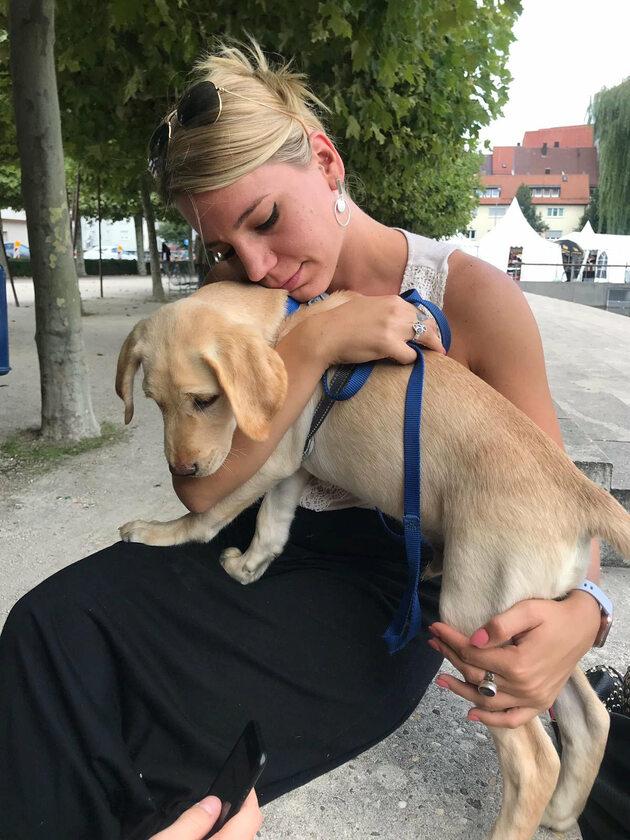 Pies Korey i Samantha Stocking