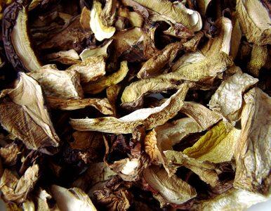 Bezpieczne suszenie grzybów. Poznaj 5 najważniejszych zasad