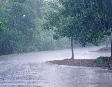 Prognoza pogody na niedzielę 30 sierpnia. Przelotny deszcz i burze w...