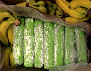 Kokaina w bananach w sklepach popularnej sieci. Policjanci przechwycili...
