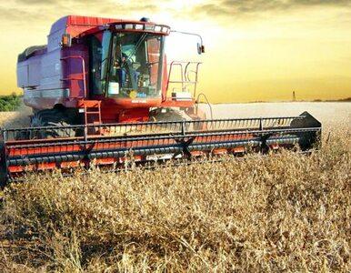 Dopłata do ubezpieczenia rolnika wynosi 244 tys. zł
