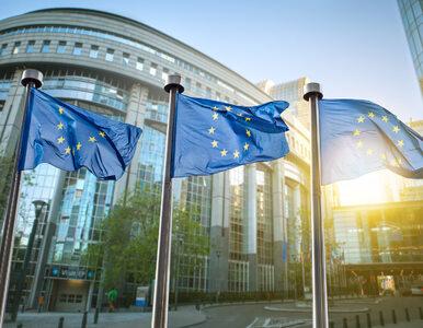 Wybory do europarlamentu. PiS wygrywa kolejny sondaż