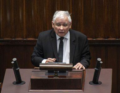 Jarosław Kaczyński dostał maseczkę z kotem. Pojawił się z nią w Sejmie