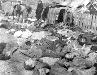 """W Lublinie mordy na Wołyniu będą """"ludobójstwem"""""""