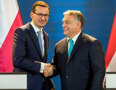 """Orban chce z Morawieckim """"przeorganizować"""" prawicę w Europie. """"Wspólnie..."""