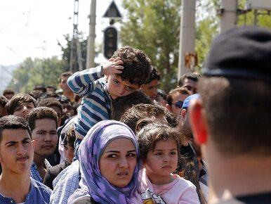 Odezwa przywódców Unii Europejskiej do uchodźców