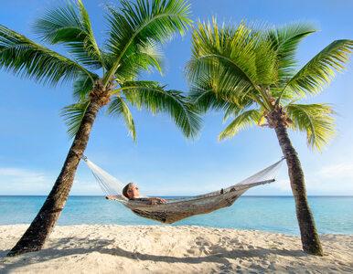 Ile na tegoroczne wakacje wydadzą Polacy?