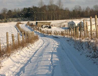 Pogoda na wtorek: Czekają nas kolejne opady śniegu