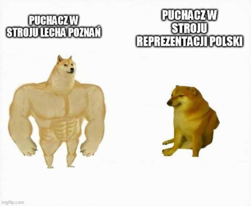 Mem po meczu Polska – Rosja