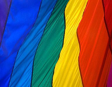 Więzienie za obrażanie homoseksualistów